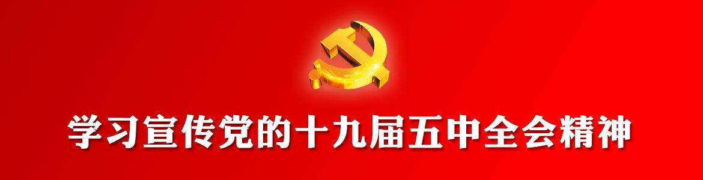 学习宣传党的十九届五中全会精神